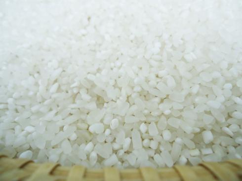 Gạo Tấm